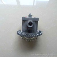 DGS30/127L(A)矿用隔爆型LED巷道灯
